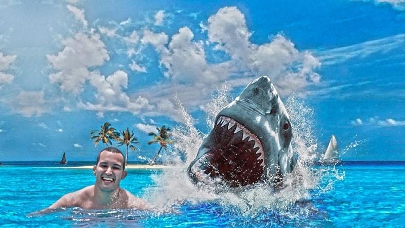 tiburon toma de riesgos en Forex