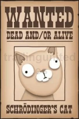 gato de Schrodinger