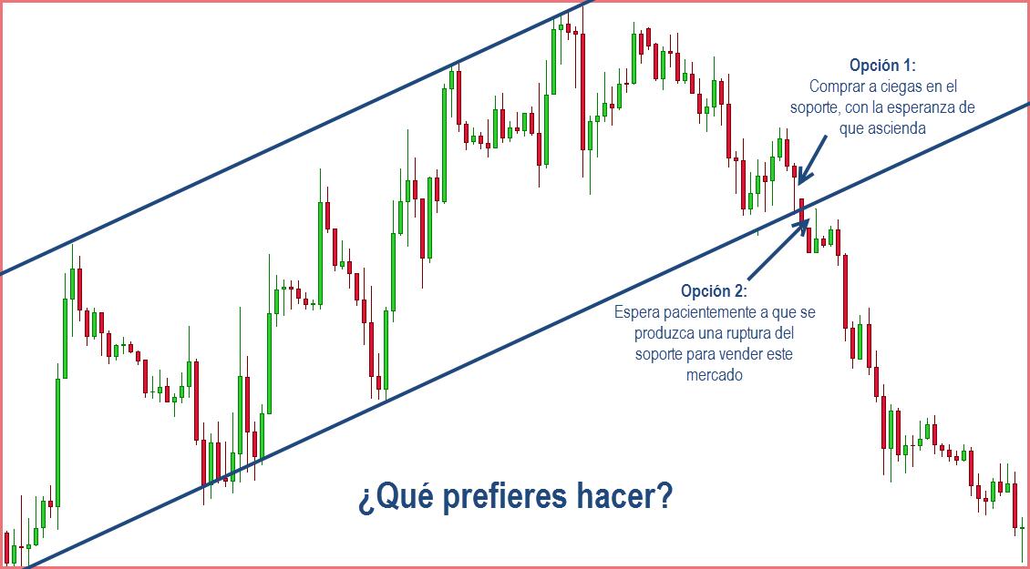 trader forex listo