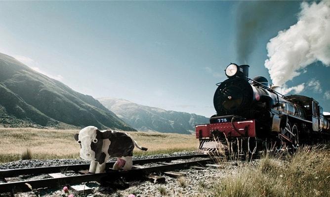 Opera en Forex inteligentemente tren vaca