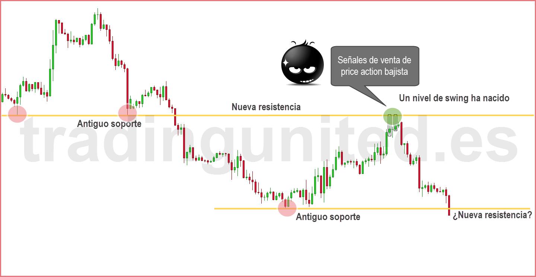swing trading nuevo