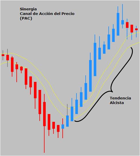 accion del precio sinergia ejemplo9