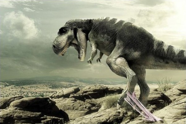 posibilidades-de-exito-tiranosaurio