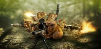 Cómo operar y disparar con el informe cot de tu lado