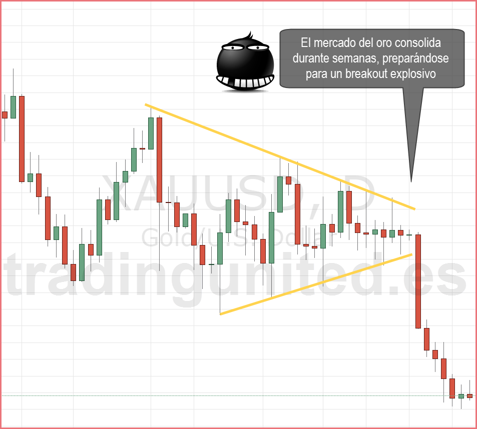 Que es hacer trading en forex