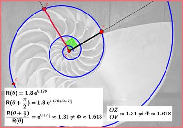 espiral logaritmica ondas de elliott